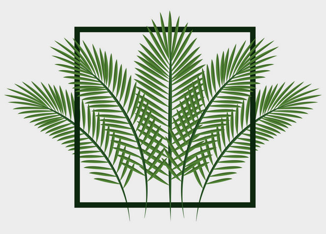 green palm fronds